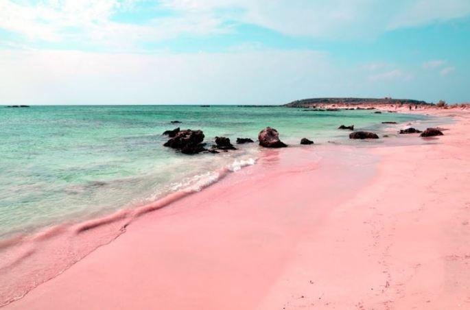 bermuda-pink-sand-beach
